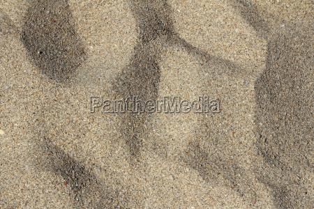 florida sand background