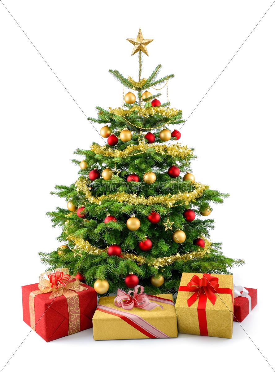 dichter weihnachtsbaum mit geschenken in rot und gold stockfoto 10318077 bildagentur. Black Bedroom Furniture Sets. Home Design Ideas