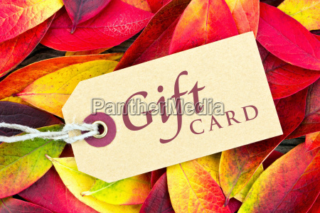 gift card coupon voucher gift autumn