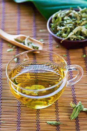verveine tee oder verbena tea