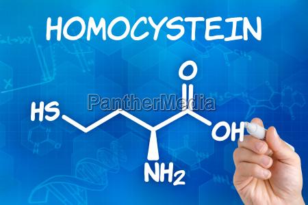 hand zeichnet chemische strukturformel von homocystein