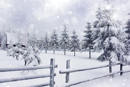 winterlandschaft mit verschneiten tannen ad zaun