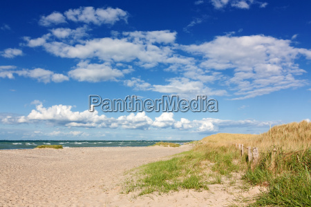 beach with dunes on the baltic