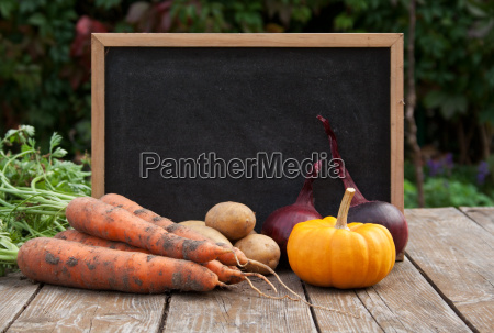 fall copy space chalkboard background backgrounds