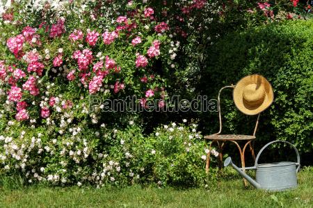 rosengarten mit stuhl sonnenhut und giesskanne