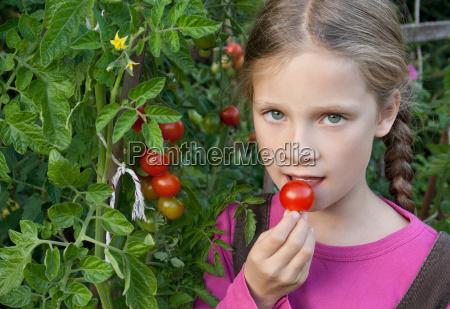 essen nahrungsmittel lebensmittel nahrung sommer sommerlich