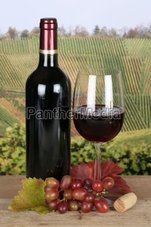 rotwein in weinflasche in weinbergen