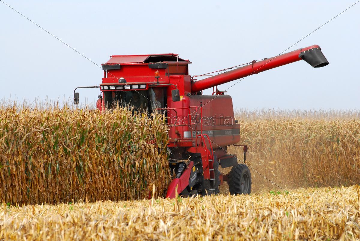 Ingolaue Herbst Mais Ernte Traktor Maehdrescher Rot Lizenzfreies