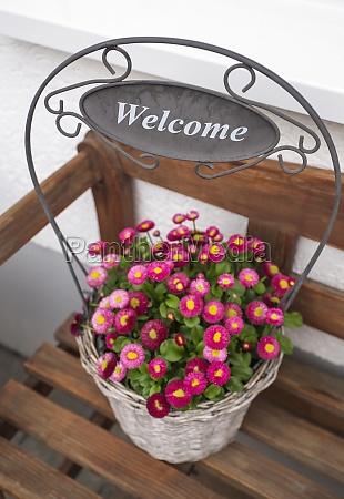 blumentopf dekoration welcome