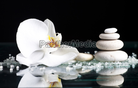 spa stones with orchid flower on