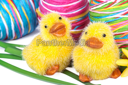 easter chicks with colourful eggs