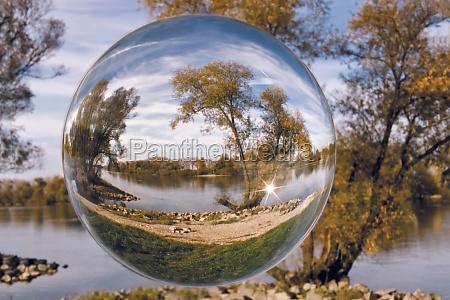 glass chalice tumbler tree danube bank