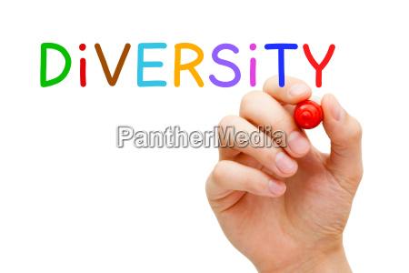 diversity konzept