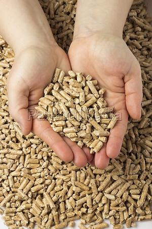 pellets in haenden