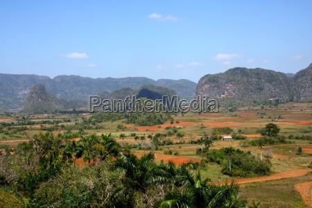 mountains rock palms valley cuba globe