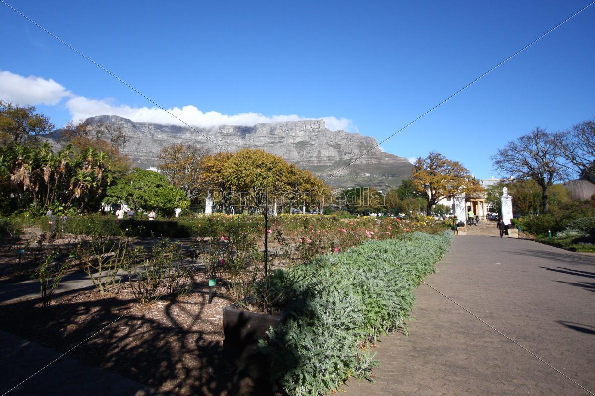 Tafelberg, Kapstadt, Südafrika, Landschaft, Aussicht, Panorama - 10998656