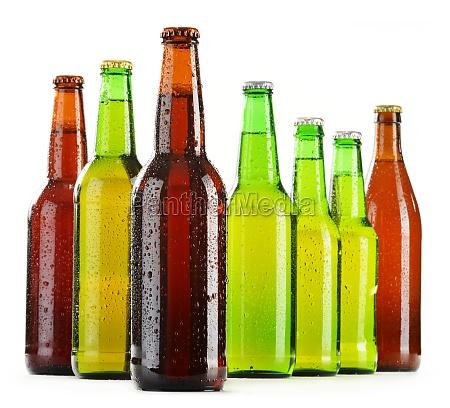 flaschen bier isoliert auf weissem hintergrund