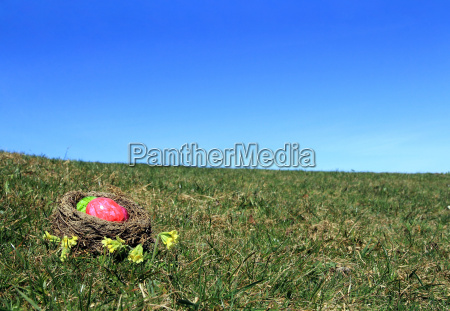 the easter basket in the meadow