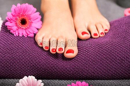 schoene gepflegte weibliche fuesse mit rotem