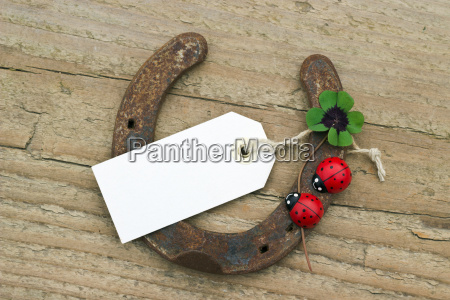 horseshoe rusty four leaf clover four