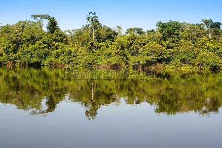 peru peruanische amazonas landschaft das foto