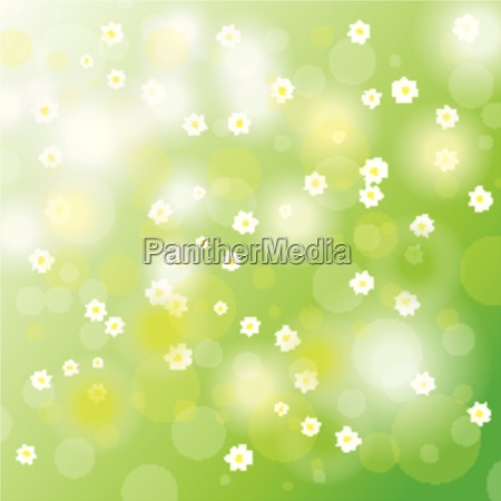 easter card background white flowers
