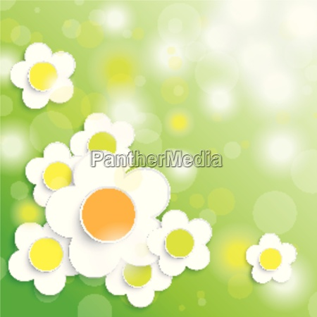easter card background big white flowers
