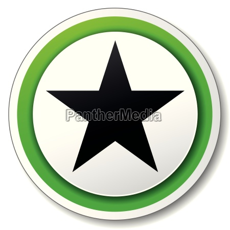 vector round star icon