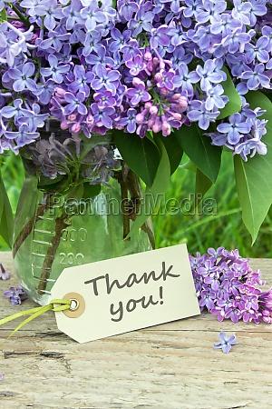 thanks thank you gratitude many thanks