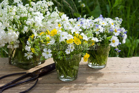 wildflowers flowers spring vase glass bouquet