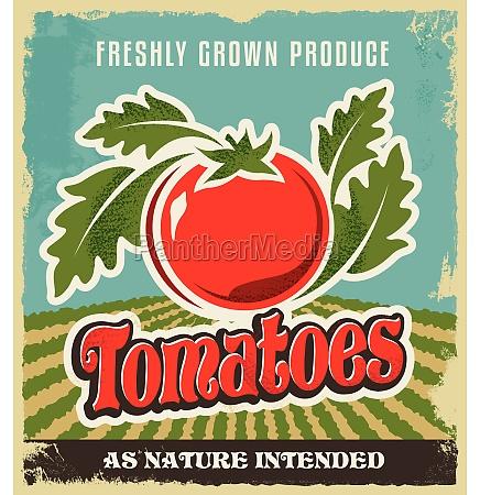 retro vintage advertising poster tomato