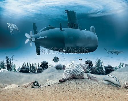 unterwasserleben mit u boot