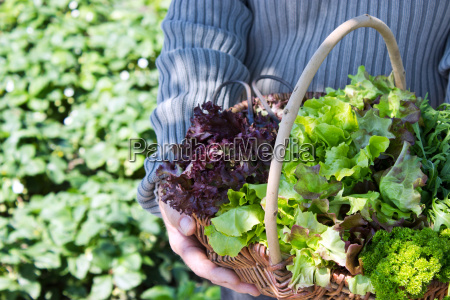 gardener woman sweeter hand hold arm