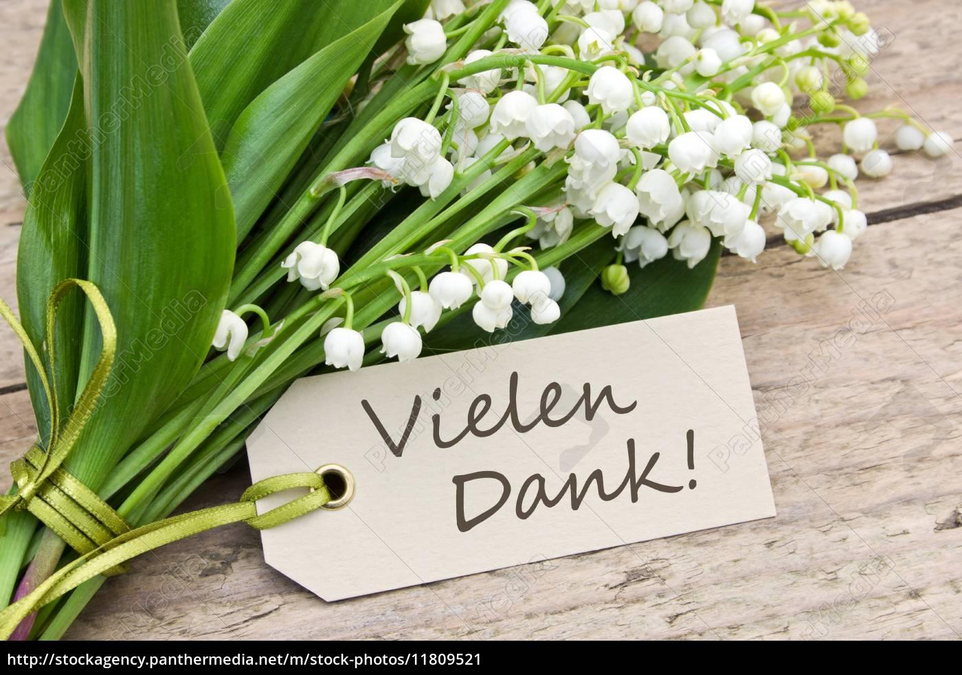 tafel, blatt, baumblatt, blume, pflanze, gewaechs - 11809521