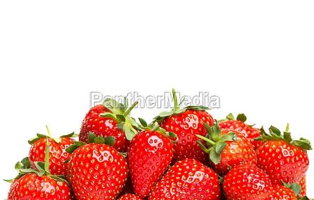 erdbeeren mit textfreiflaeche