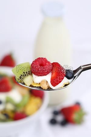 fruit muesli on spoon with yogurt