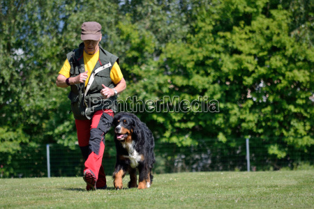 frau trainiert mit ihrem hund