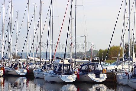 yachthafen in ost denamrk mit wald