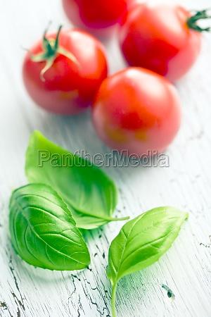 essen nahrungsmittel lebensmittel nahrung basilikum paradeiser
