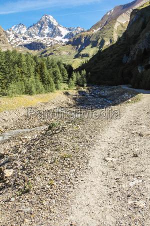 berg in den alpen im sommer