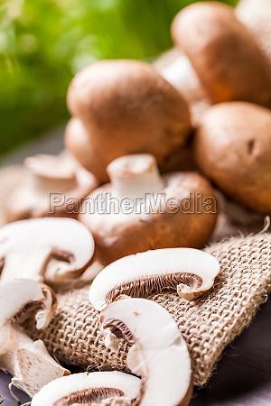 fresh braund champignons in sunlight on