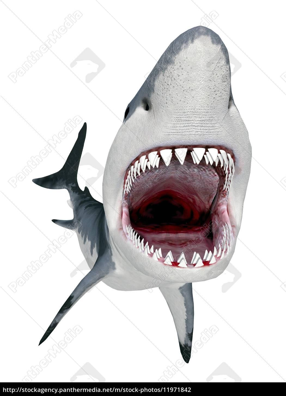 Wei Er Hai Als Ausmalbild