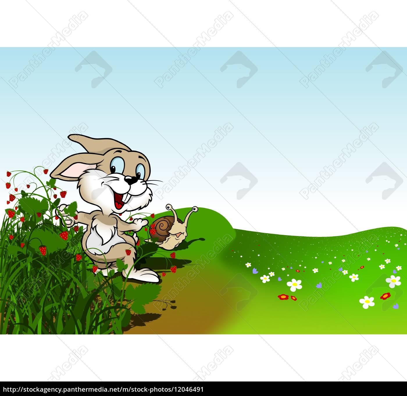 happy, rabbit - 12046491