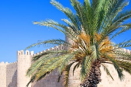stadtmauer von monastir in tunesien