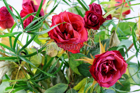 age withered rose bouquet