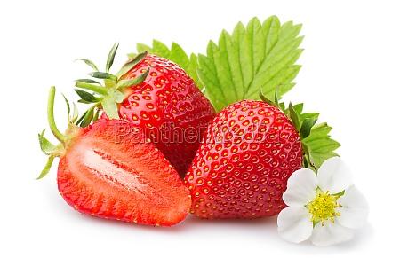 erdbeeren mit blaettern und blueten auf
