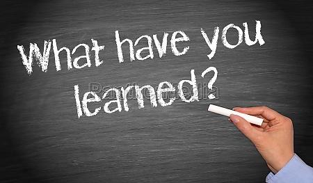 studieren studium diskussion lehrer bildung ausbildung