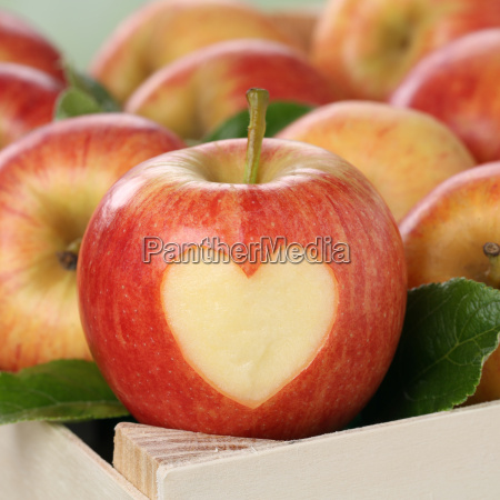 apple fruit with heart theme of