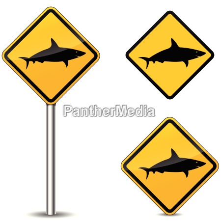 vector shark signs