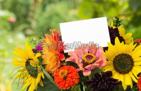 flowers summerflowers summer blossom sunflower dalia